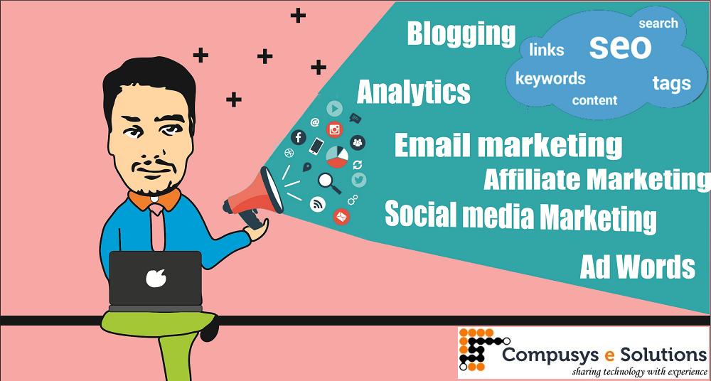 Digital Marketing Consultant in Jaipur